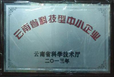 """榮獲""""雲南省科技型中小企業"""""""